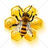 От боли в спине и суставах настой из пчел