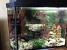 Продаются 2 аквариума